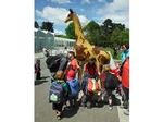 7. Kidsfirst Lincoln in Hagley Park, visiting the other giraffes